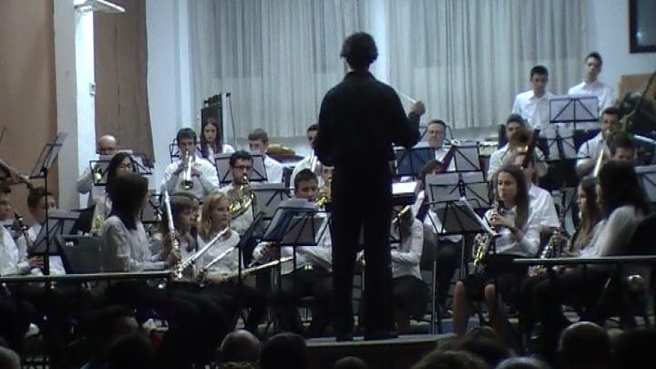Els Músics
