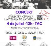 Concert de l'Orquestra Simfònica l'Artesana